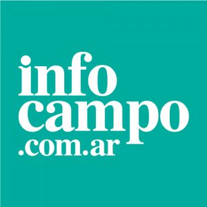 Logo-Infocampo-Celeste