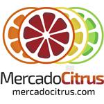 Logo-MC-2020-1
